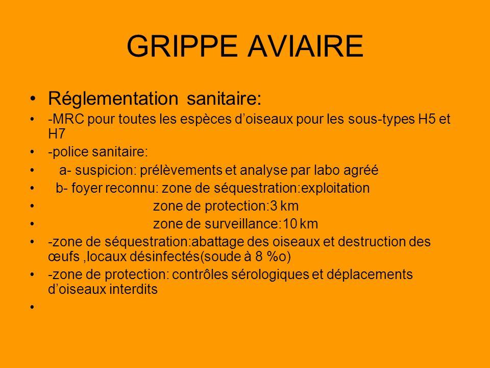 GRIPPE AVIAIRE Réglementation sanitaire: -MRC pour toutes les espèces doiseaux pour les sous-types H5 et H7 -police sanitaire: a- suspicion: prélèveme