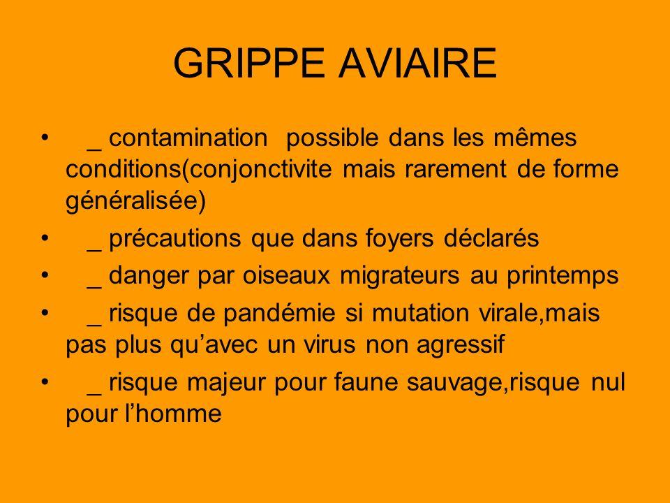GRIPPE AVIAIRE _ contamination possible dans les mêmes conditions(conjonctivite mais rarement de forme généralisée) _ précautions que dans foyers décl