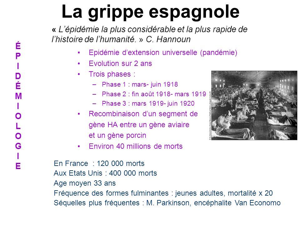 « Lépidémie la plus considérable et la plus rapide de lhistoire de lhumanité. » C. Hannoun En France : 120 000 morts Aux Etats Unis : 400 000 morts Ag