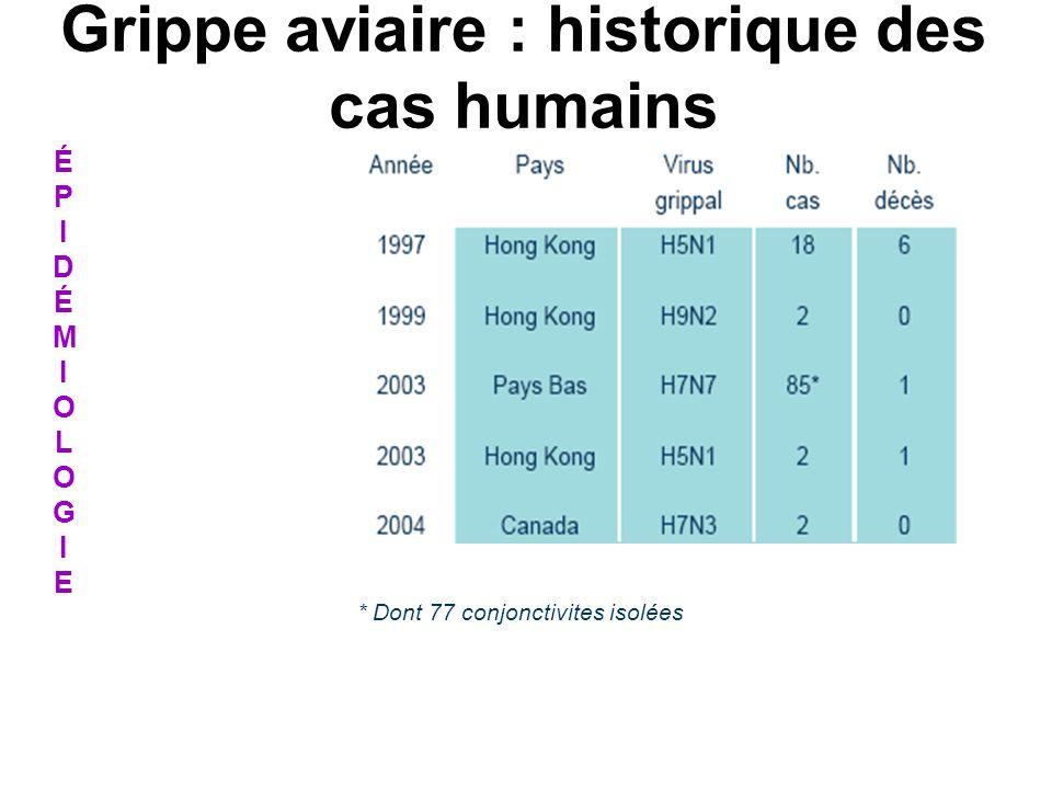 * Dont 77 conjonctivites isolées ÉPIDÉMIOLOGIEÉPIDÉMIOLOGIE Grippe aviaire : historique des cas humains