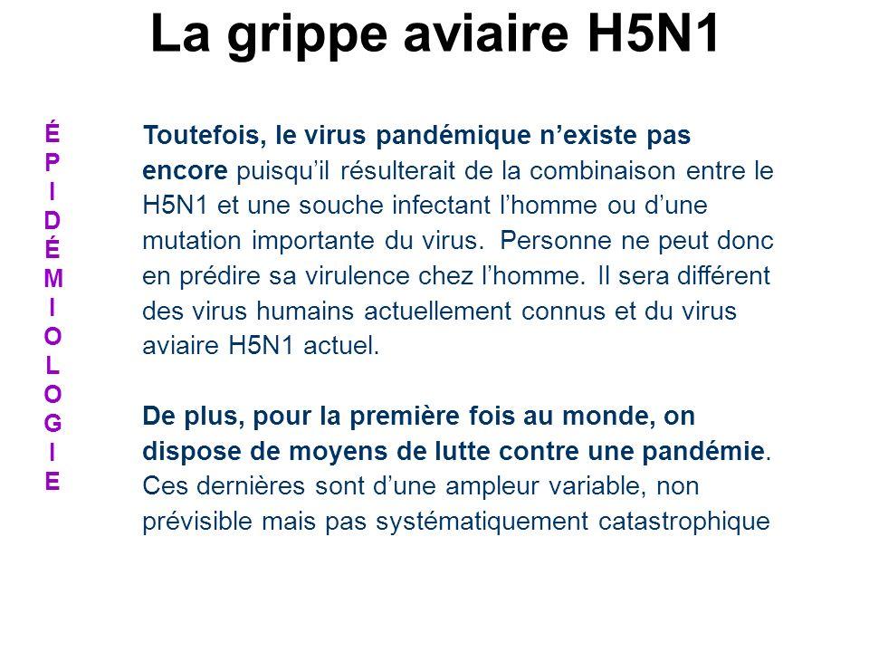 ÉPIDÉMIOLOGIEÉPIDÉMIOLOGIE Toutefois, le virus pandémique nexiste pas encore puisquil résulterait de la combinaison entre le H5N1 et une souche infect