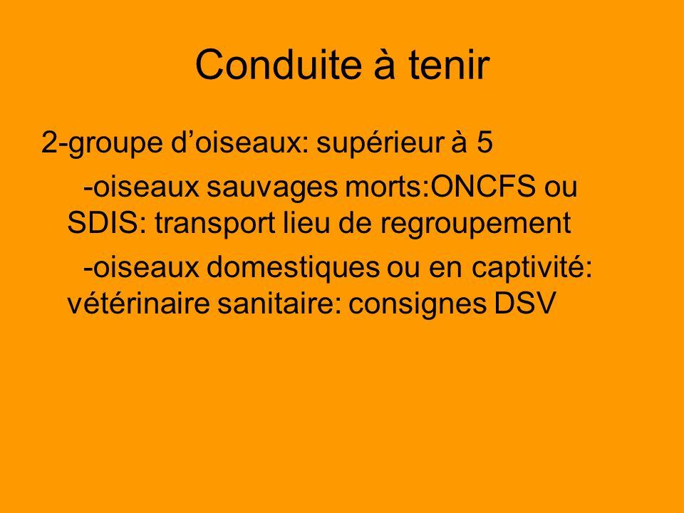 Conduite à tenir 2-groupe doiseaux: supérieur à 5 -oiseaux sauvages morts:ONCFS ou SDIS: transport lieu de regroupement -oiseaux domestiques ou en cap