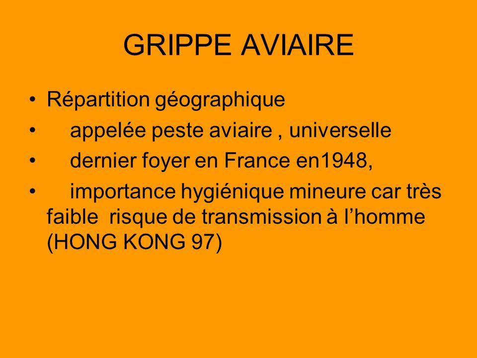 GRIPPE AVIAIRE Répartition géographique appelée peste aviaire, universelle dernier foyer en France en1948, importance hygiénique mineure car très faib