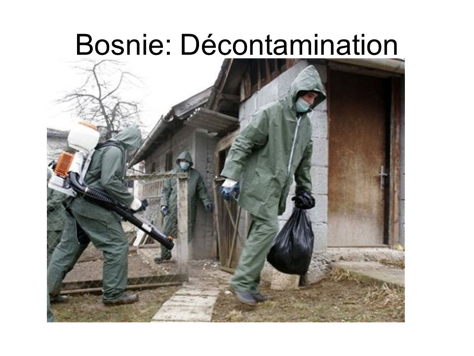 Bosnie: Décontamination