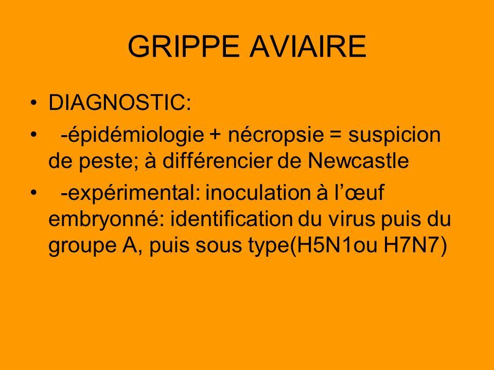 GRIPPE AVIAIRE DIAGNOSTIC: -épidémiologie + nécropsie = suspicion de peste; à différencier de Newcastle -expérimental: inoculation à lœuf embryonné: i