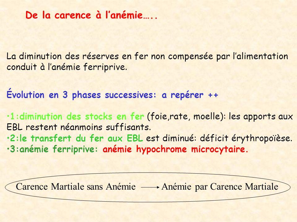 Carence Pré Latente Carence Latente Carence Manifeste Ferritine Fer sérique Transferrine (sidérophyline) C.S.S.