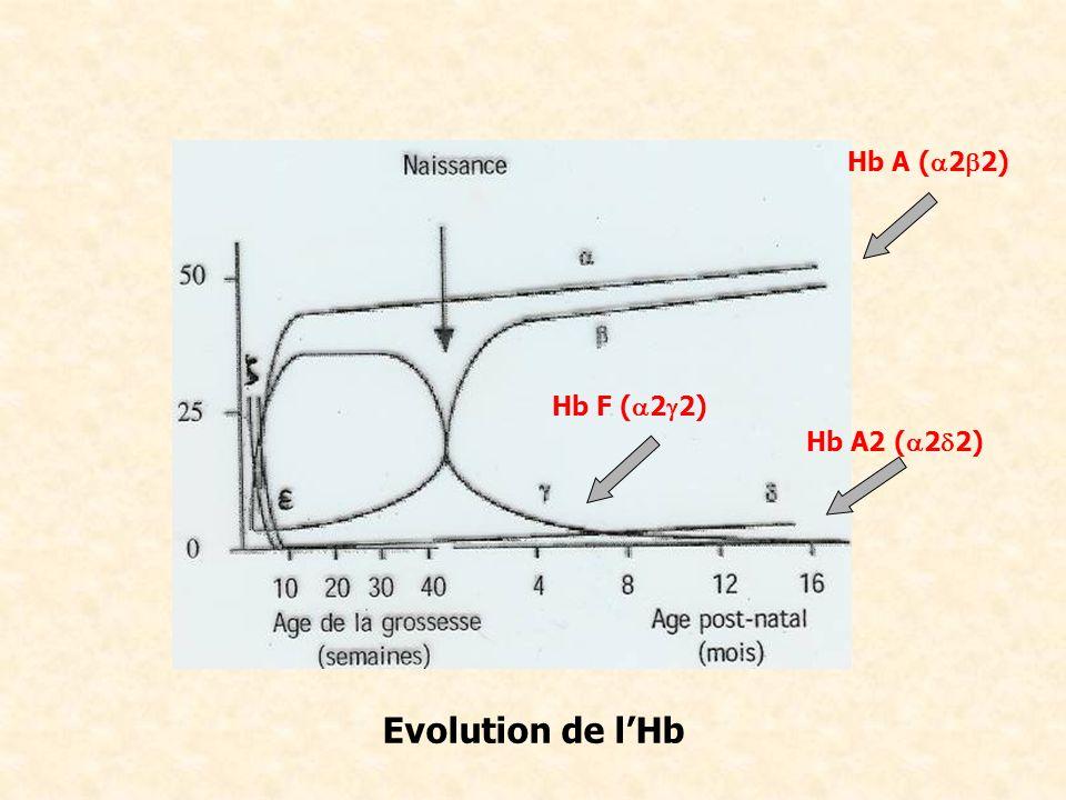 Définition : Thalassémie, Drépanocytose.Transmission.