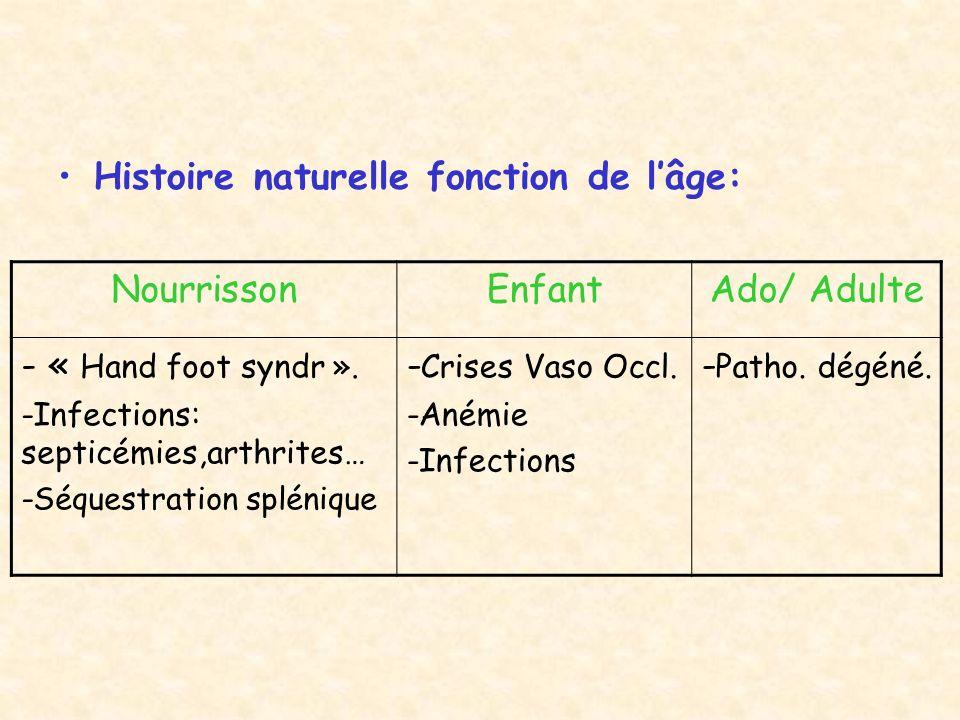 BIOLOGIE : –Anémie Normochrome, Normocytaire, Régénér.