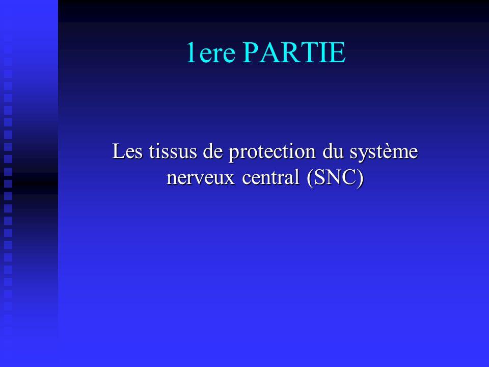 1ere PARTIE Les tissus de protection du système nerveux central (SNC)