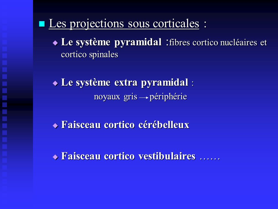 Les projections sous corticales : Les projections sous corticales : Le système pyramidal : fibres cortico nucléaires et cortico spinales Le système py
