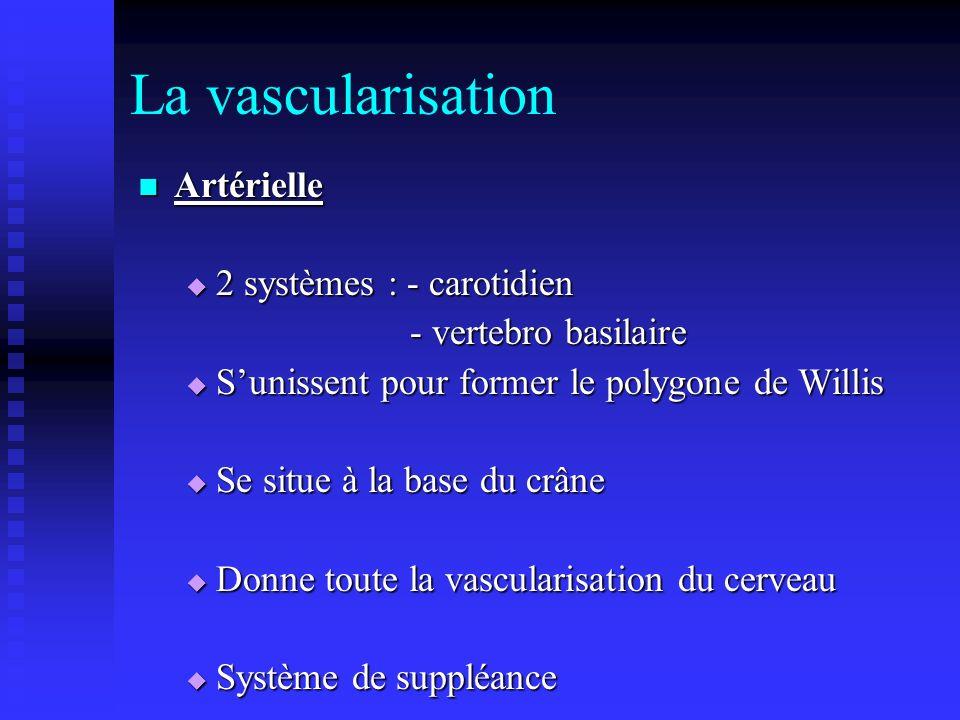 La vascularisation Artérielle Artérielle 2 systèmes : - carotidien 2 systèmes : - carotidien - vertebro basilaire - vertebro basilaire Sunissent pour