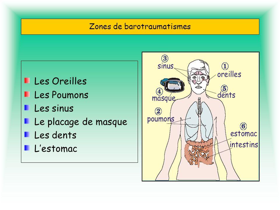 Zones de barotraumatismes Les Oreilles Les Poumons Les sinus Le placage de masque Les dents Lestomac