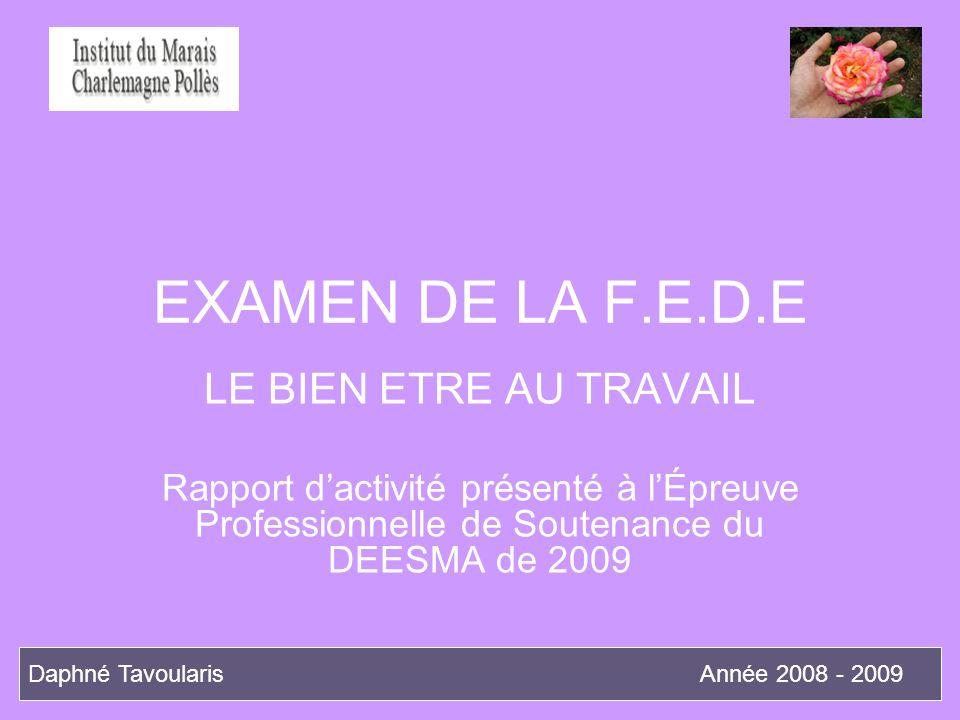 EXAMEN DE LA F.E.D.E LE BIEN ETRE AU TRAVAIL Rapport dactivité présenté à lÉpreuve Professionnelle de Soutenance du DEESMA de 2009 Daphné TavoularisAn
