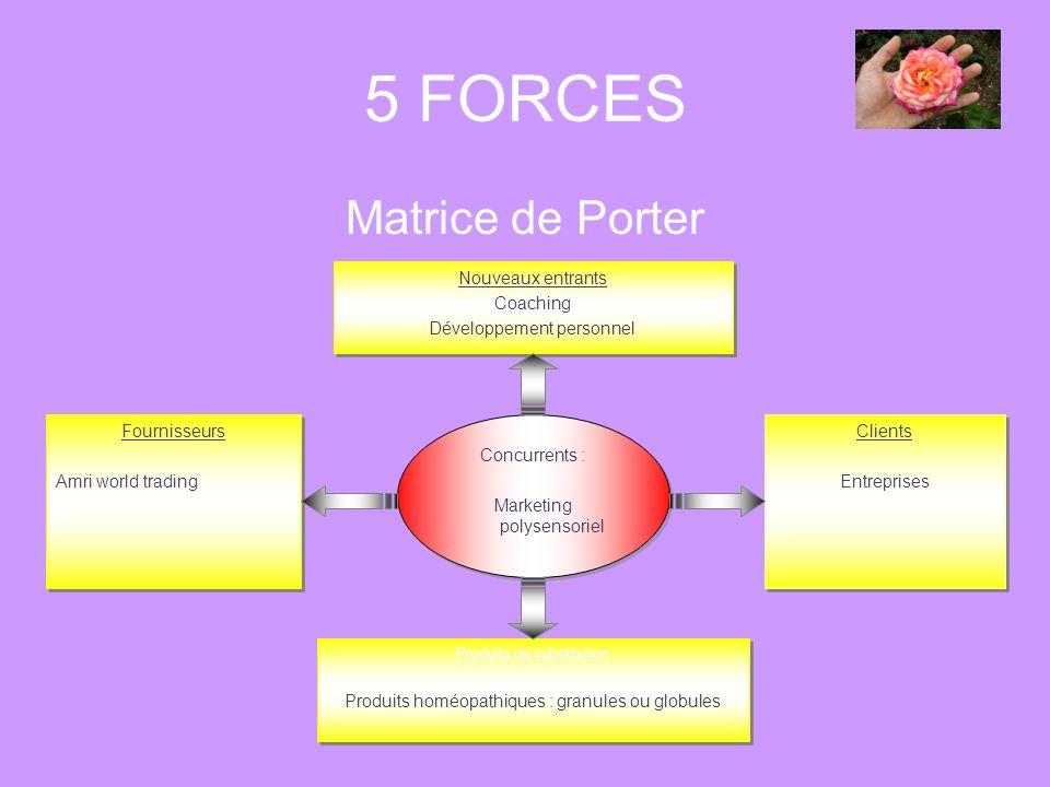 5 FORCES Matrice de Porter Concurrents : Marketing polysensoriel Concurrents : Marketing polysensoriel Nouveaux entrants Coaching Développement person