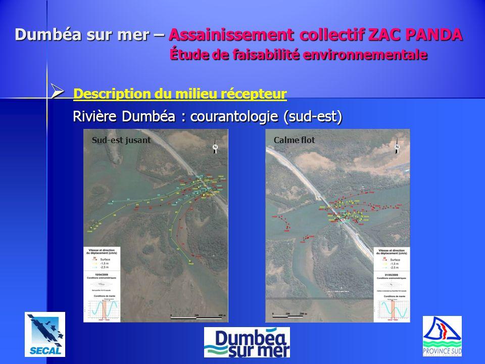 Description du milieu récepteur Rivière Dumbéa : courantologie (sud-est) Sud-est jusantCalme flot Dumbéa sur mer – Assainissement collectif ZAC PANDA