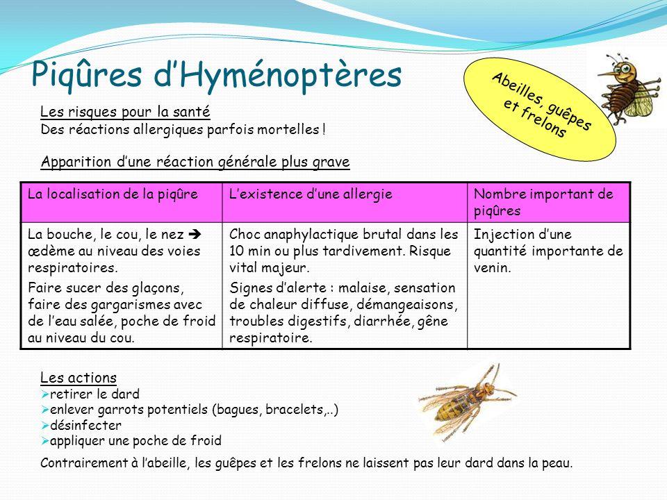 Piqûres dHyménoptères Les risques pour la santé Des réactions allergiques parfois mortelles ! Apparition dune réaction générale plus grave Les actions
