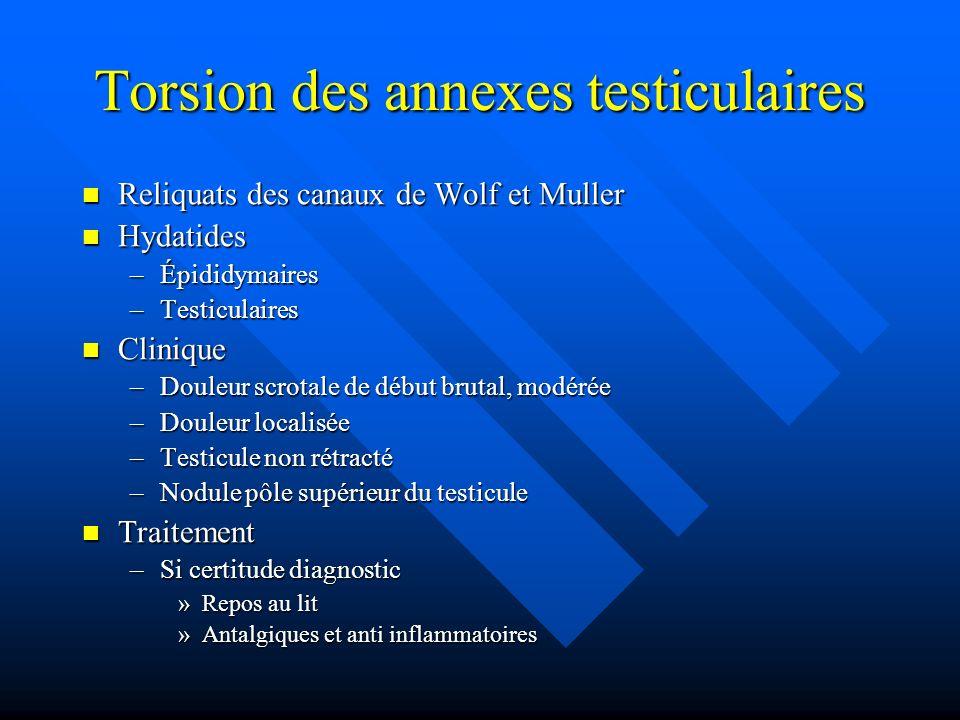 Torsion des annexes testiculaires Reliquats des canaux de Wolf et Muller Reliquats des canaux de Wolf et Muller Hydatides Hydatides –Épididymaires –Te