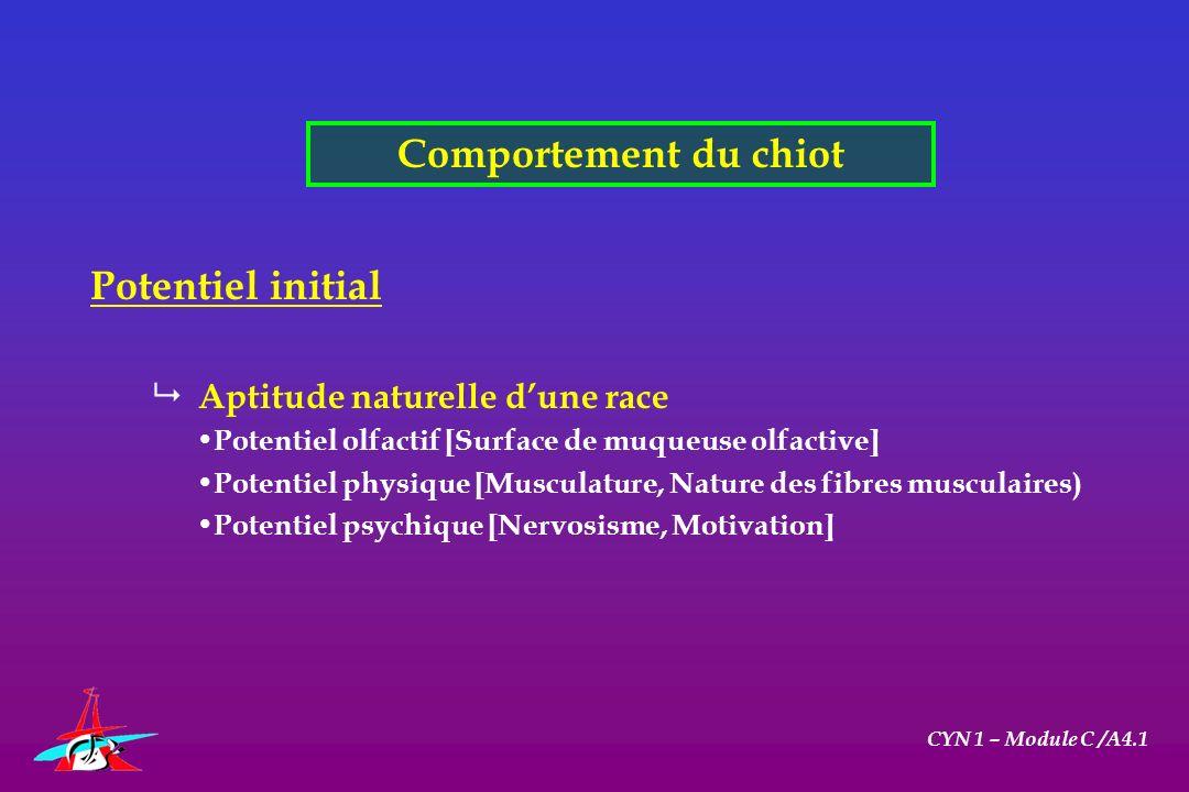 Comportement du chiot CYN 1 – Module C /A4.1 Potentiel initial Aptitude naturelle dune race Potentiel olfactif [Surface de muqueuse olfactive] Potenti