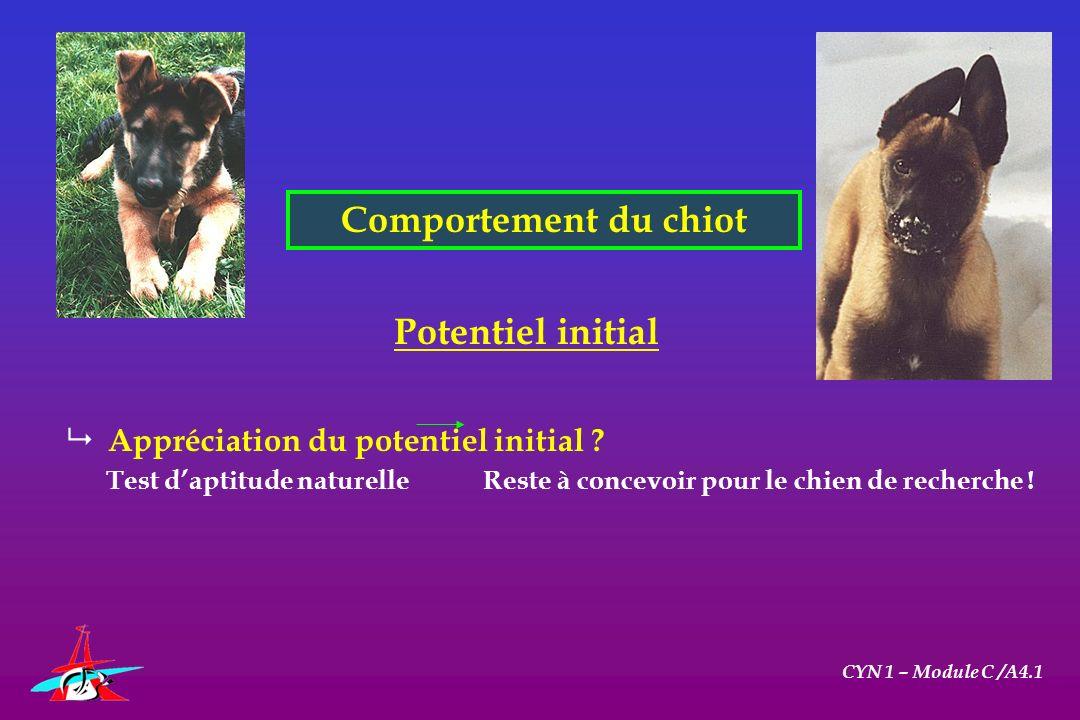 Comportement du chiot CYN 1 – Module C /A4.1 Potentiel initial Appréciation du potentiel initial ? Test daptitude naturelle Reste à concevoir pour le