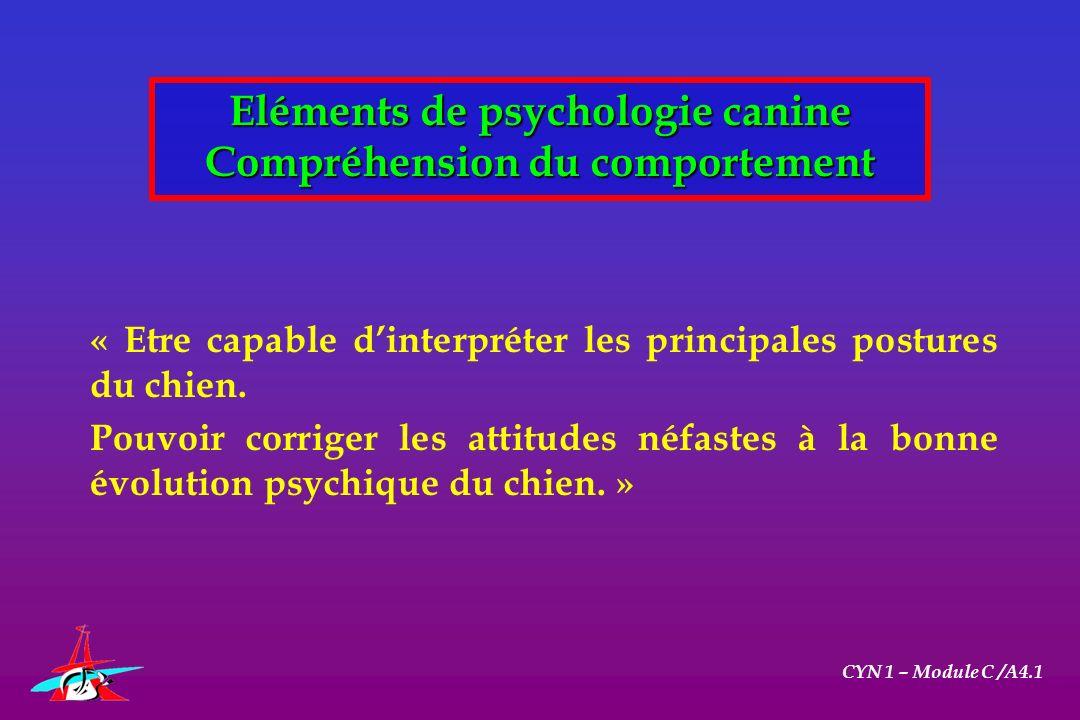 1/ Comportement spontané du chien en meute CYN 1 – Module C /A4.1 Eléments de psychologie canine Compréhension du comportement 2/ Comportement du chiot 3/ Comprendre le chien adulte 4/ Anomalies et troubles du comportement
