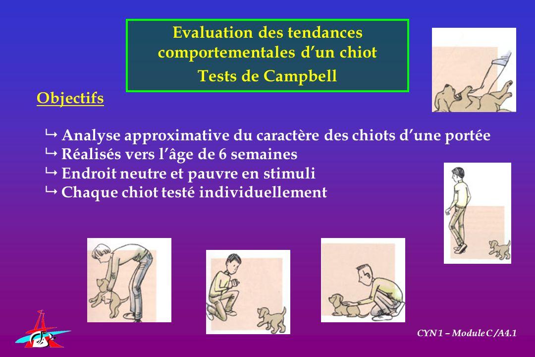 Evaluation des tendances comportementales dun chiot Tests de Campbell CYN 1 – Module C /A4.1 Objectifs Analyse approximative du caractère des chiots d