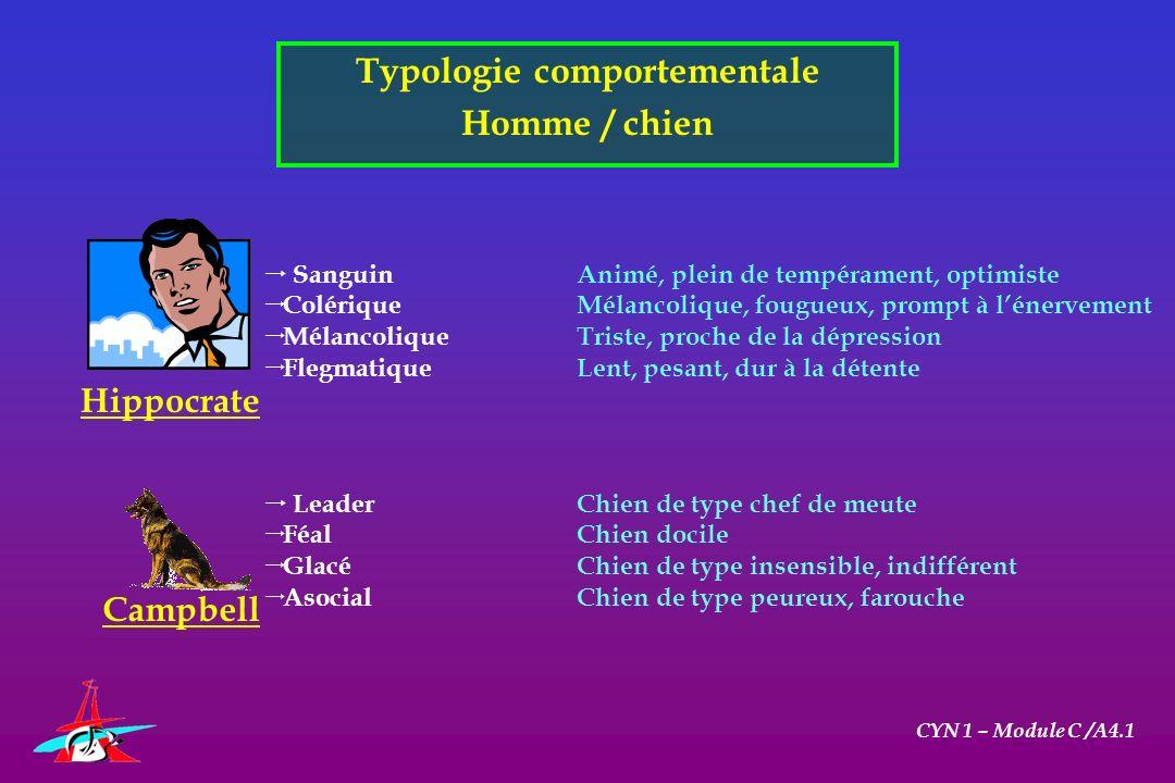 Typologie comportementale Homme / chien CYN 1 – Module C /A4.1 Hippocrate Campbell SanguinAnimé, plein de tempérament, optimiste ColériqueMélancolique