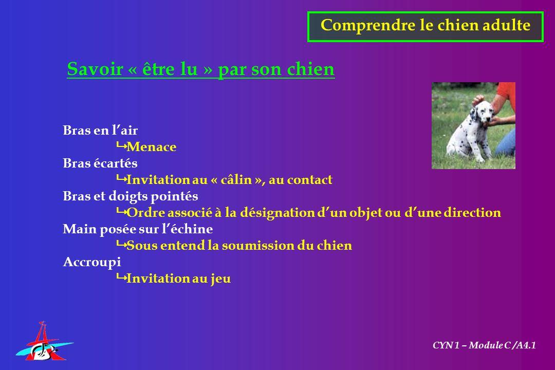 CYN 1 – Module C /A4.1 Savoir « être lu » par son chien Bras en lair Menace Bras écartés Invitation au « câlin », au contact Bras et doigts pointés Or