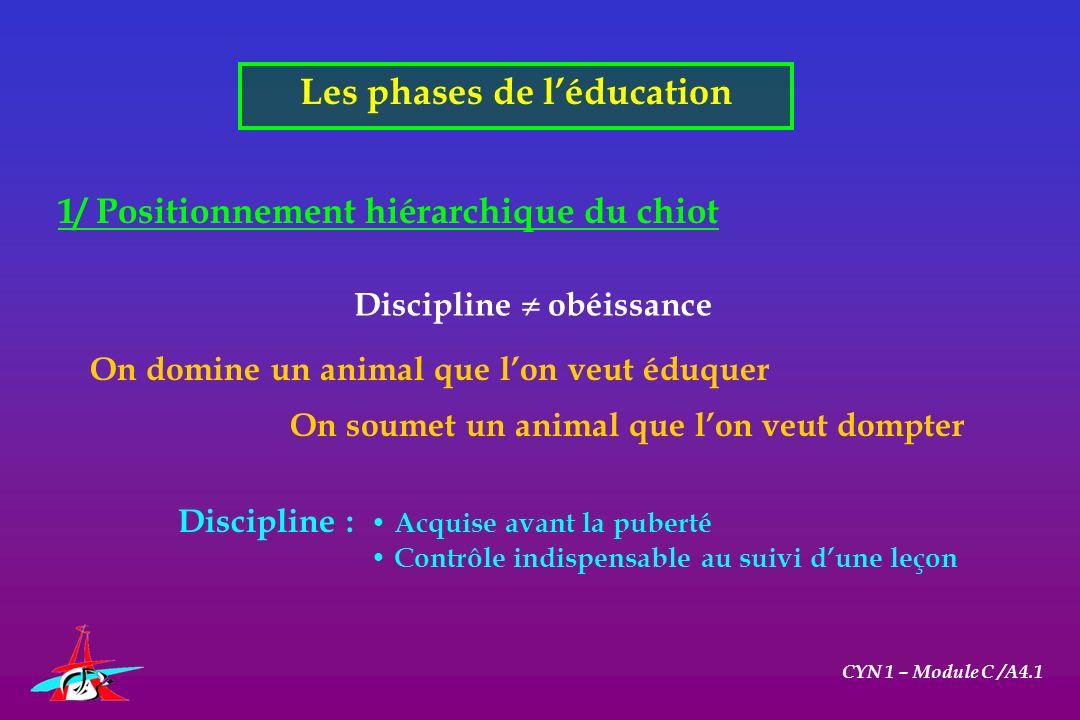 Les phases de léducation CYN 1 – Module C /A4.1 1/ Positionnement hiérarchique du chiot Discipline obéissance On domine un animal que lon veut éduquer