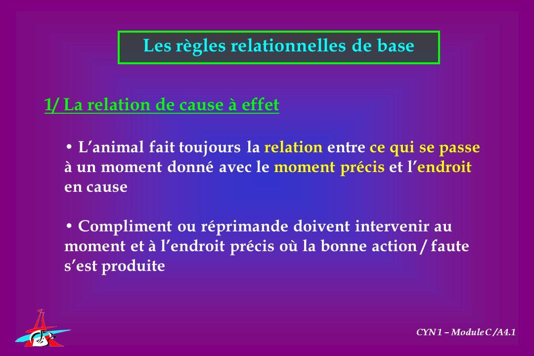 Les règles relationnelles de base CYN 1 – Module C /A4.1 1/ La relation de cause à effet Lanimal fait toujours la relation entre ce qui se passe à un
