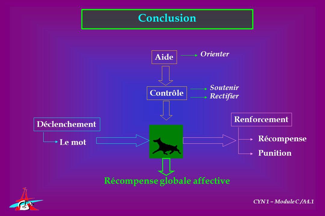 Conclusion CYN 1 – Module C /A4.1 Aide Contrôle Déclenchement Renforcement Orienter Soutenir Rectifier Le mot Récompense Punition Récompense globale a