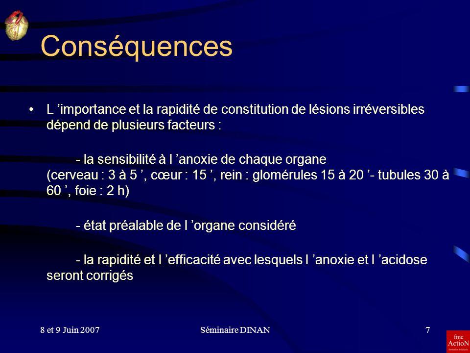 8 et 9 Juin 2007Séminaire DINAN7 Conséquences L importance et la rapidité de constitution de lésions irréversibles dépend de plusieurs facteurs : - la
