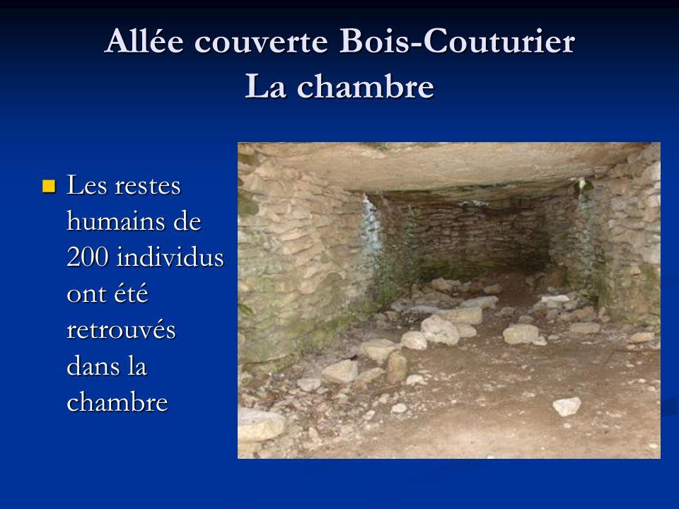 Allée couverte Bois-Couturier La chambre Les restes humains de 200 individus ont été retrouvés dans la chambre Les restes humains de 200 individus ont