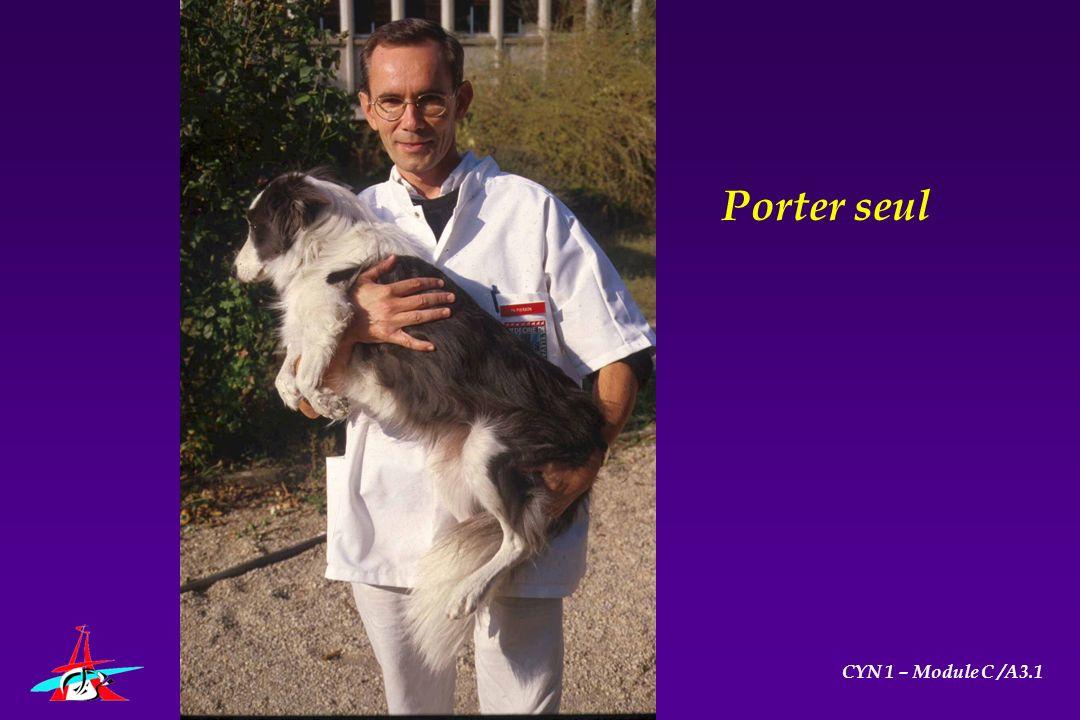 Porter seul CYN 1 – Module C /A3.1