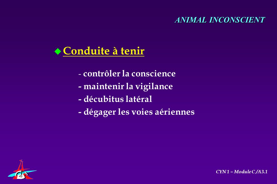 u Conduite à tenir - contrôler la conscience - maintenir la vigilance - décubitus latéral - dégager les voies aériennes ANIMAL INCONSCIENT CYN 1 – Mod