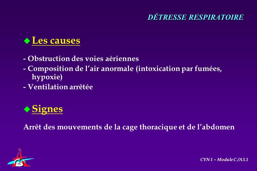 u Les causes - Obstruction des voies aériennes - Composition de lair anormale (intoxication par fumées, hypoxie) - Ventilation arrêtée u Signes Arrêt
