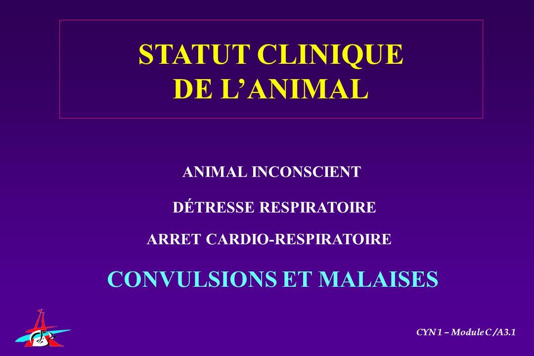 ANIMAL INCONSCIENT DÉTRESSE RESPIRATOIRE ARRET CARDIO-RESPIRATOIRE CONVULSIONS ET MALAISES STATUT CLINIQUE DE LANIMAL CYN 1 – Module C /A3.1