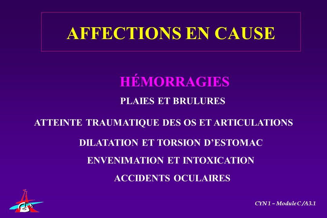 HÉMORRAGIES PLAIES ET BRULURES DILATATION ET TORSION DESTOMAC ENVENIMATION ET INTOXICATION ACCIDENTS OCULAIRES AFFECTIONS EN CAUSE ATTEINTE TRAUMATIQU