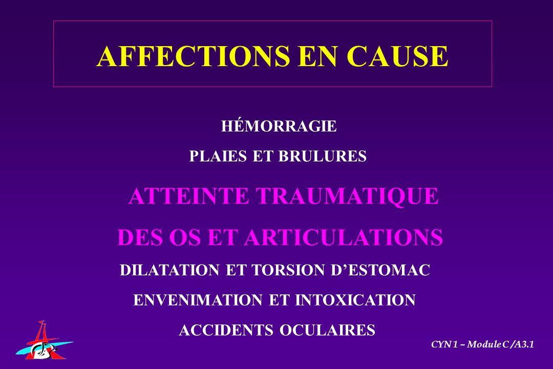 HÉMORRAGIE PLAIES ET BRULURES ATTEINTE TRAUMATIQUE DES OS ET ARTICULATIONS DILATATION ET TORSION DESTOMAC ENVENIMATION ET INTOXICATION ACCIDENTS OCULA