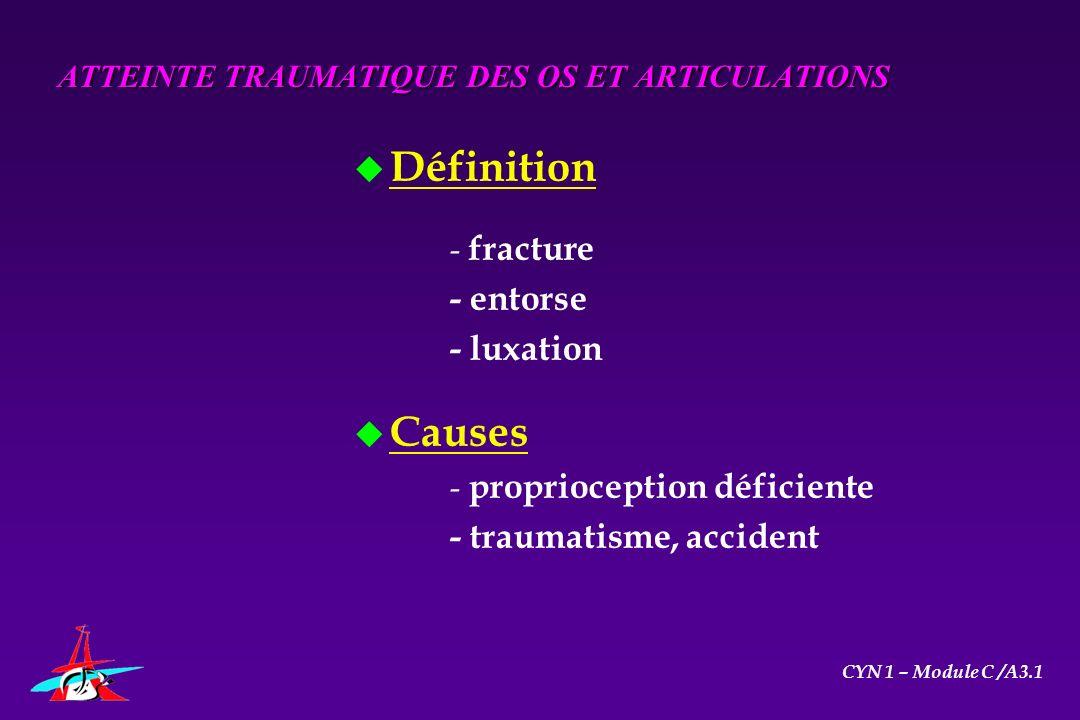 u Définition - fracture - entorse - luxation u Causes - proprioception déficiente - traumatisme, accident ATTEINTE TRAUMATIQUE DES OS ET ARTICULATIONS