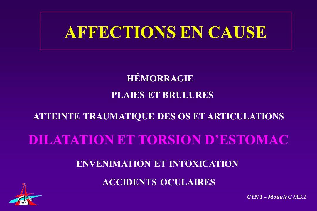 AFFECTIONS EN CAUSE HÉMORRAGIE PLAIES ET BRULURES ATTEINTE TRAUMATIQUE DES OS ET ARTICULATIONS DILATATION ET TORSION DESTOMAC ENVENIMATION ET INTOXICA