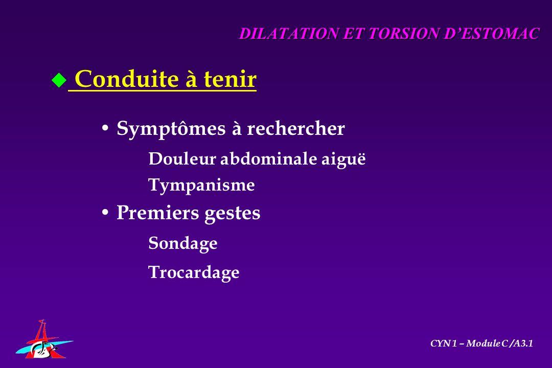 u Conduite à tenir Symptômes à rechercher Douleur abdominale aiguë Tympanisme Premiers gestes Sondage Trocardage DILATATION ET TORSION DESTOMAC CYN 1