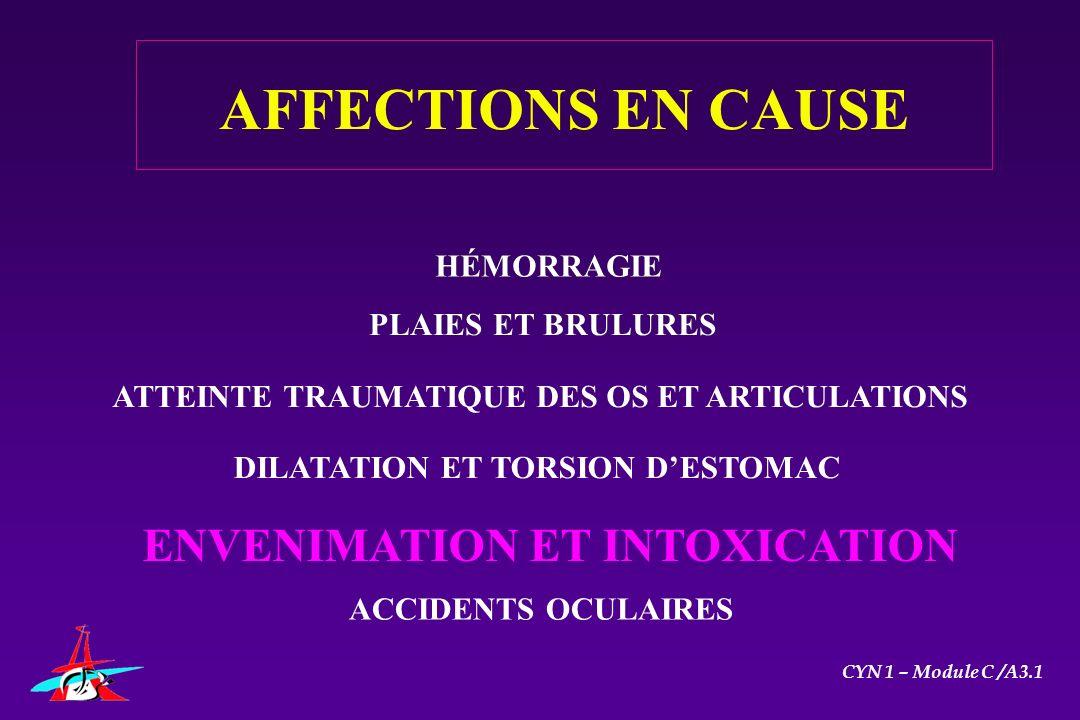 HÉMORRAGIE PLAIES ET BRULURES DILATATION ET TORSION DESTOMAC ENVENIMATION ET INTOXICATION ACCIDENTS OCULAIRES CYN 1 – Module C /A3.1 AFFECTIONS EN CAU