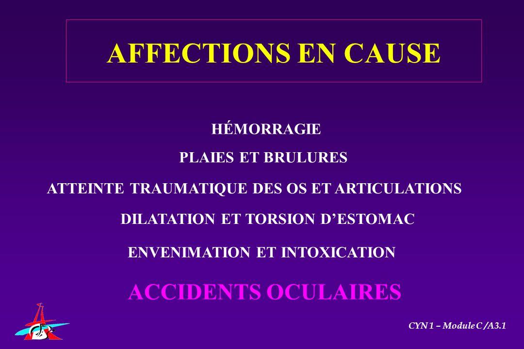 CYN 1 – Module C /A3.1 AFFECTIONS EN CAUSE HÉMORRAGIE PLAIES ET BRULURES DILATATION ET TORSION DESTOMAC ENVENIMATION ET INTOXICATION ACCIDENTS OCULAIR