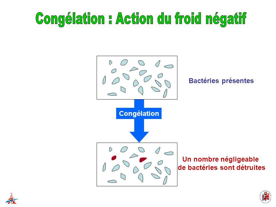 Bactéries présentes Un nombre négligeable de bactéries sont détruites Congélation