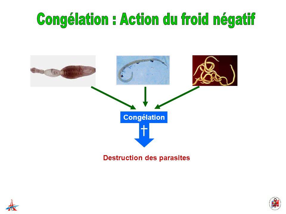 Destruction des parasites Congélation