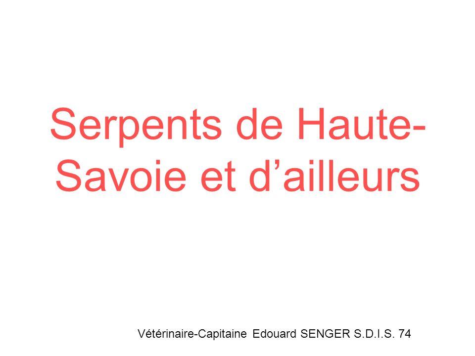 Serpents de Haute- Savoie et dailleurs Vétérinaire-Capitaine Edouard SENGER S.D.I.S. 74
