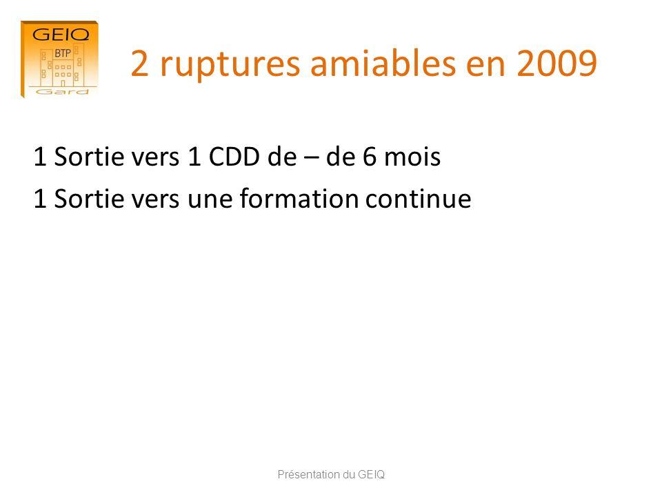 2 ruptures amiables en 2009 1 Sortie vers 1 CDD de – de 6 mois 1 Sortie vers une formation continue Présentation du GEIQ