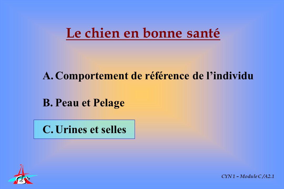 CYN 1 – Module C /A2.1 Le chien en bonne santé A.Comportement de référence de lindividu B.Peau et Pelage C.Urines et selles