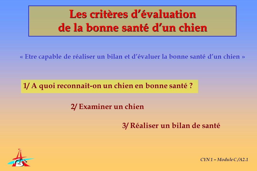 Les critères dévaluation de la bonne santé dun chien « Etre capable de réaliser un bilan et dévaluer la bonne santé dun chien » CYN 1 – Module C /A2.1