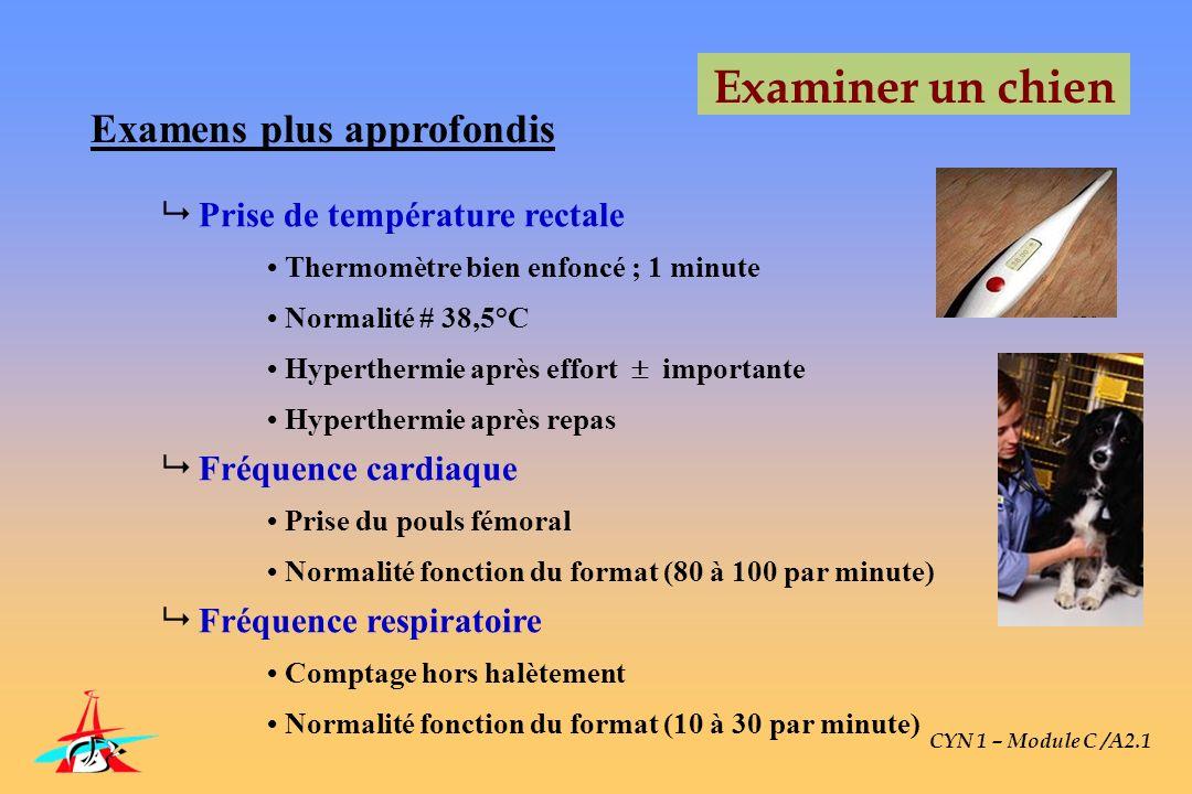 CYN 1 – Module C /A2.1 Examiner un chien Examens plus approfondis Prise de température rectale Thermomètre bien enfoncé ; 1 minute Normalité # 38,5°C